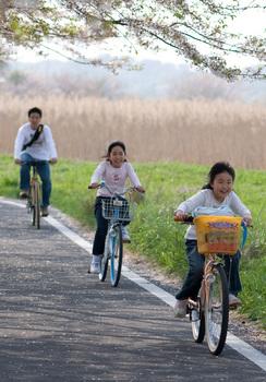 Hanami_cycling.jpg